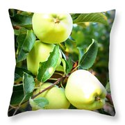 Backyard Garden Series- Golden Delicious Apples Throw Pillow