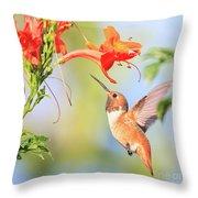 Backyard Hummingbird Series # 54 Throw Pillow