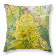 Backyard Throw Pillow by Leah  Tomaino