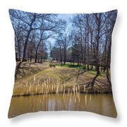 Backyard Solitude Throw Pillow