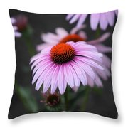 Backyard Wonders Throw Pillow