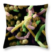 Bacteria In Olive Brine Throw Pillow