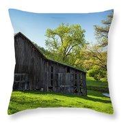 Bad Axe Barn Throw Pillow