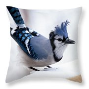 Bad Feather Day Throw Pillow