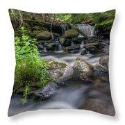 Badger Creek #2 Throw Pillow