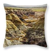 Badlands 1 Throw Pillow