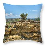 Badlands 9 Throw Pillow