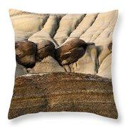 Badlands Drumheller Alberta Canada 4 Throw Pillow