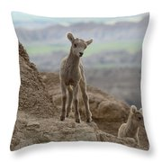 Badlands Dynamic Duo Throw Pillow