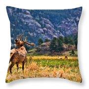 Badlands Elk  Throw Pillow