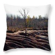 Badlands In Autumn Throw Pillow