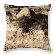Badlands Sepia Throw Pillow