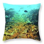 Bahamas Shipwreck Fish Throw Pillow