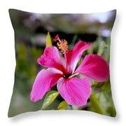Bahamian Flower Throw Pillow