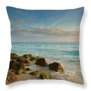 Bahia Honda Shoreline Throw Pillow