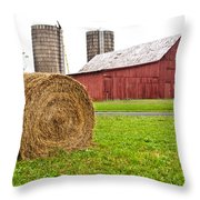 Bail And Barn Throw Pillow