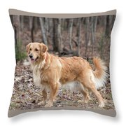 Bailee The Golden Throw Pillow