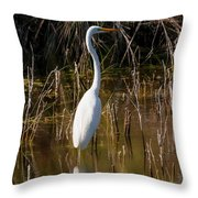 Bailey Tract Egret Two Throw Pillow