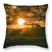 Baja Sunset Throw Pillow