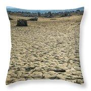 Baker Lake Desert  Throw Pillow