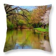 Baker Park Throw Pillow