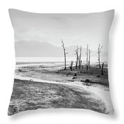 Bako National Park At Low Tide. Throw Pillow