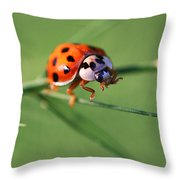 Balancing Act Throw Pillow by William Selander