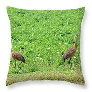 Balance And Majesty Throw Pillow