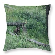 Balance Beam Throw Pillow