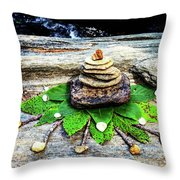 Balance - Sweetwater Creek - Atlanta, Ga Throw Pillow