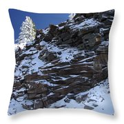 Balance Of Nature Throw Pillow