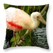 Balancing Act - Roseate Spoonbill Throw Pillow