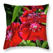 Balancing Raindrops Throw Pillow