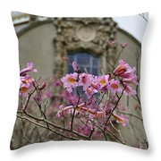 Balboa Park Building And Spring Flowers - San Diego Throw Pillow