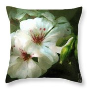 Balcony Beauty Throw Pillow