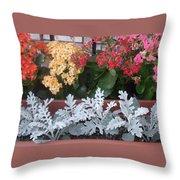Balcony Garden Throw Pillow