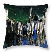 Bald Cypress Stump Throw Pillow
