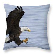 Bald Eagle At Ready Throw Pillow