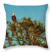 Bald Eagle Burnt Store Marina Florida Throw Pillow