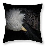 Bald Eagle Cleaning Throw Pillow