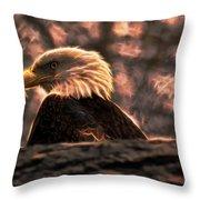 Bald Eagle Electrified Throw Pillow