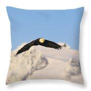 Bald Eagle Flying In Alaska Throw Pillow