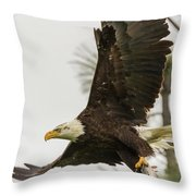 Bald Eagle Flying With Fish Throw Pillow
