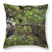 Bald Eagle In A Pine Tree, No. 4 Throw Pillow