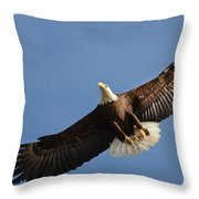 Bald Eagle In Flight 031520168883 Throw Pillow