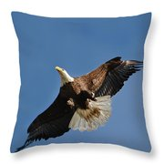 Bald Eagle In Flight 031520168884 Throw Pillow