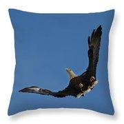 Bald Eagle In Flight 031520168885 Throw Pillow