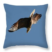 Bald Eagle In Flight 031520168936 Throw Pillow
