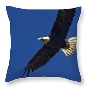 Bald Eagle In Flight-signed-#2709 Throw Pillow