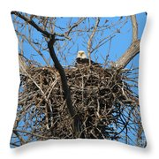 Bald Eagle Lookout  3661 Throw Pillow
